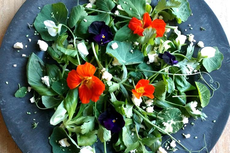 kruidensalade-met-bloemen